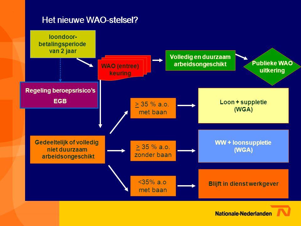 Het nieuwe WAO-stelsel
