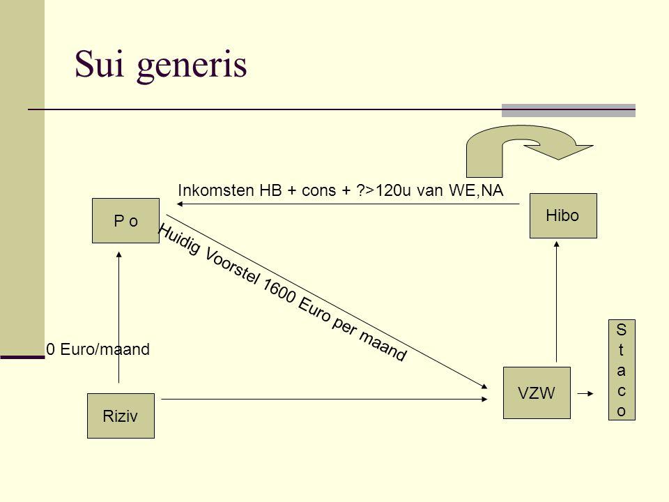 Sui generis Inkomsten HB + cons + >120u van WE,NA Hibo P o