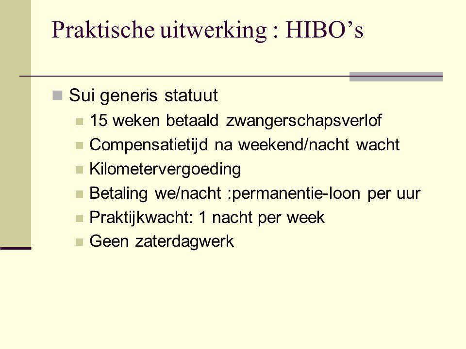 Praktische uitwerking : HIBO's