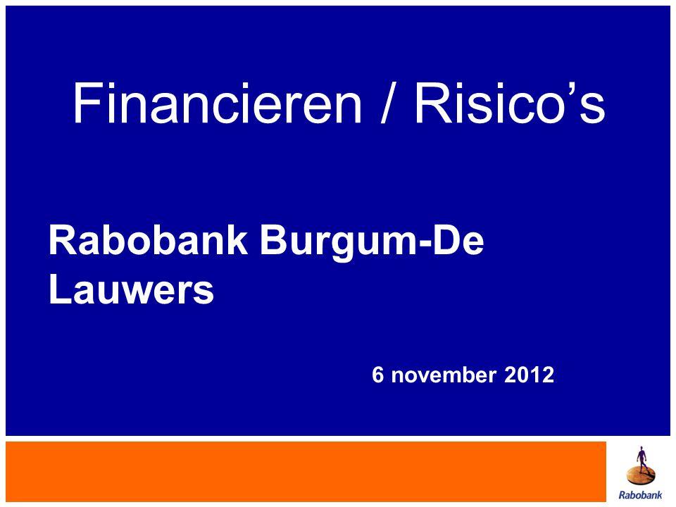 Financieren / Risico's