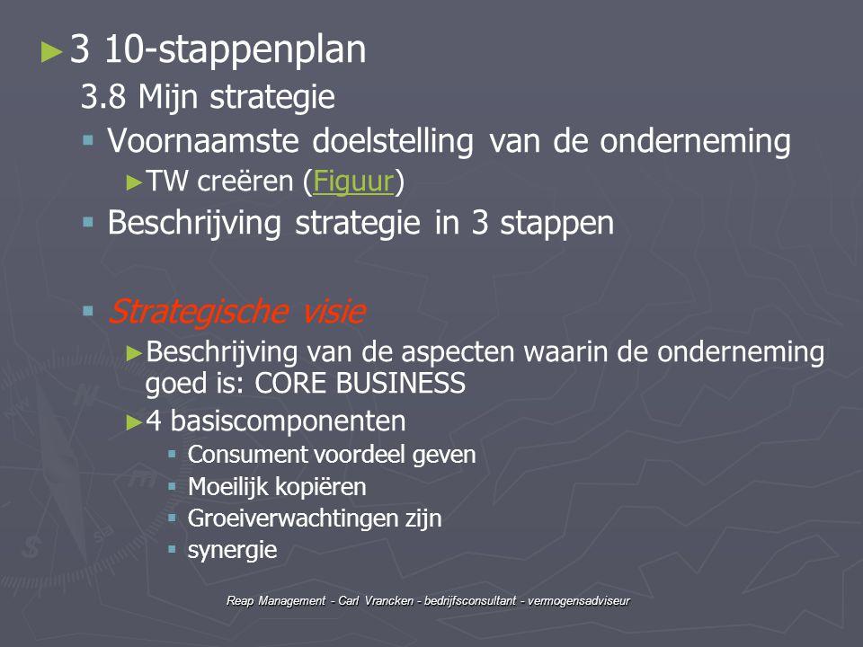 3 10-stappenplan 3.8 Mijn strategie