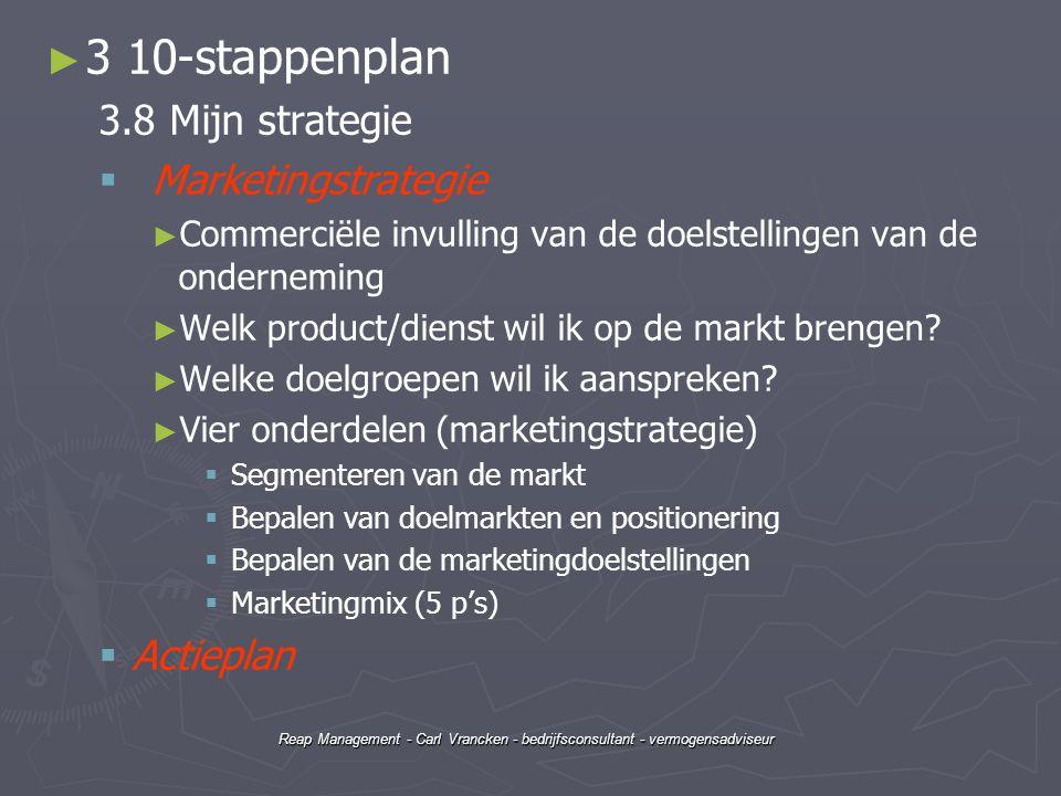 3 10-stappenplan 3.8 Mijn strategie Marketingstrategie Actieplan