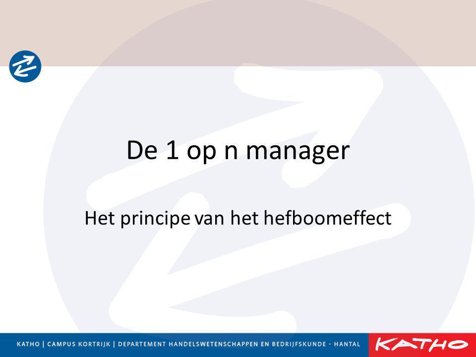 Het principe van het hefboomeffect