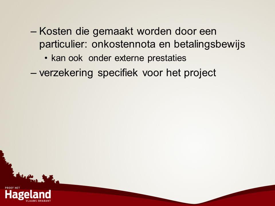 verzekering specifiek voor het project