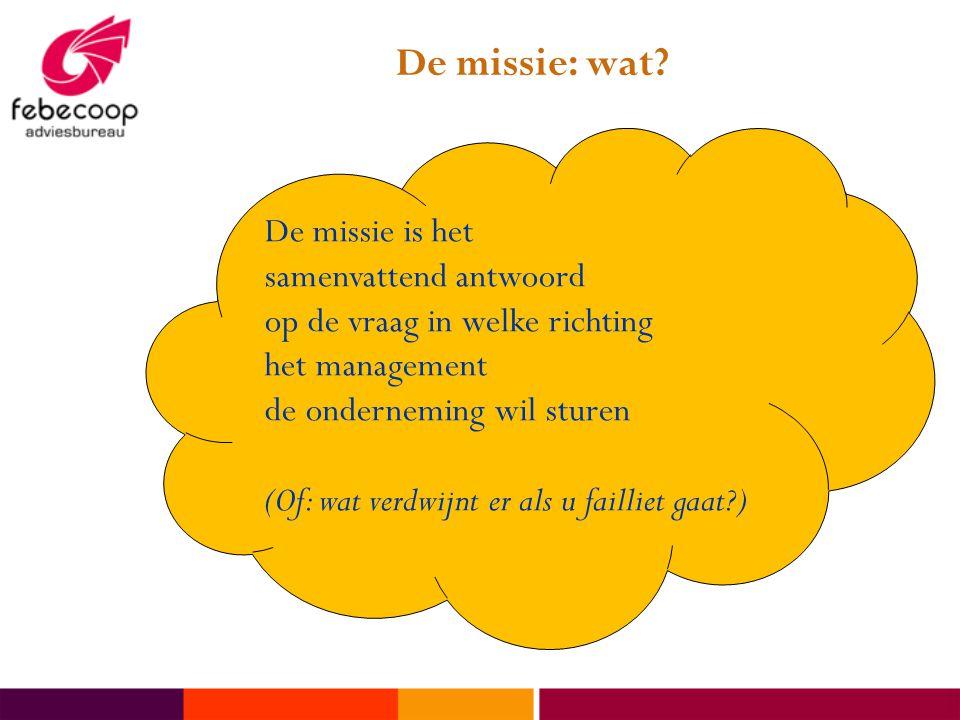 De missie: wat De missie is het samenvattend antwoord op de vraag in welke richting het management de onderneming wil sturen.