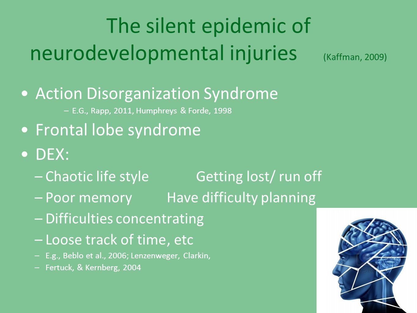 The silent epidemic of neurodevelopmental injuries (Kaffman, 2009)
