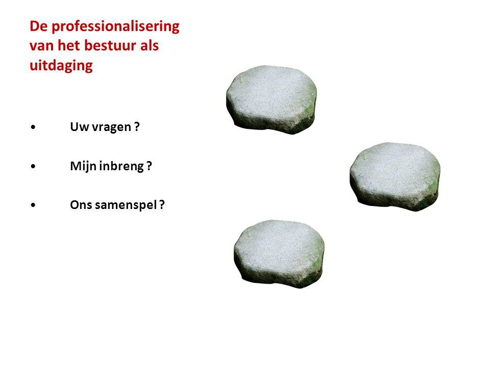 De professionalisering van het bestuur als uitdaging
