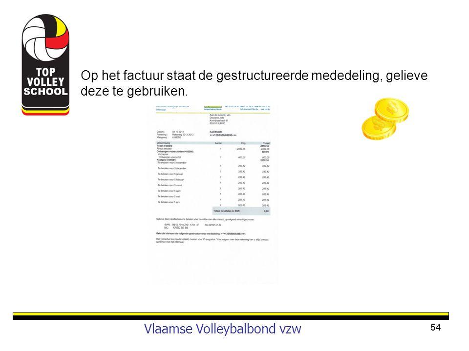 Vlaamse Volleybalbond vzw