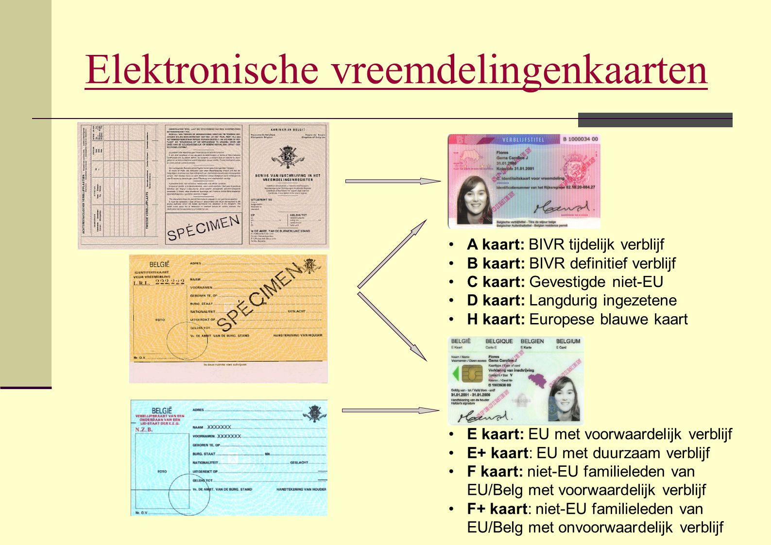 Elektronische vreemdelingenkaarten