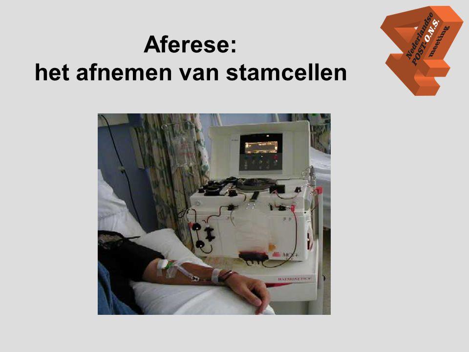 Aferese: het afnemen van stamcellen