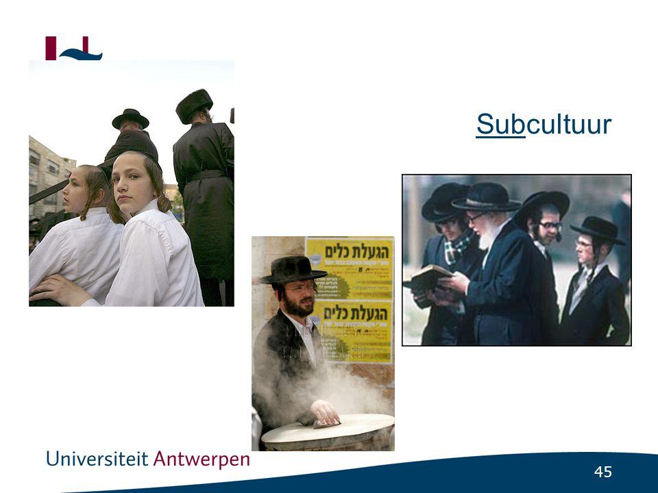 Subcultuur (en het vraagstuk van de hoofddoek)