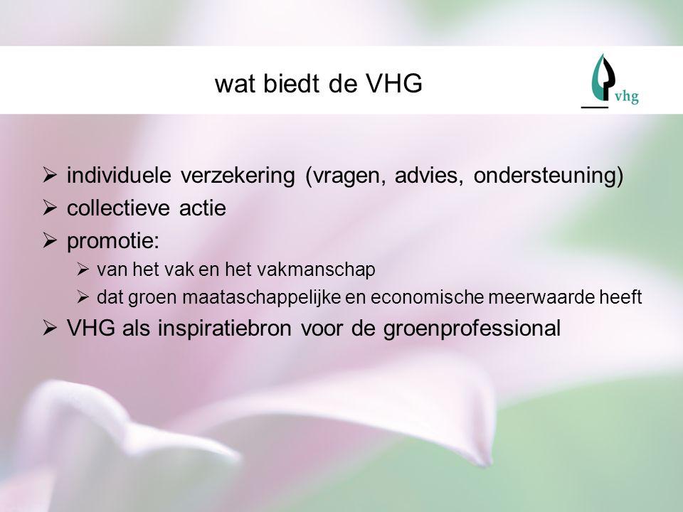 wat biedt de VHG individuele verzekering (vragen, advies, ondersteuning) collectieve actie. promotie:
