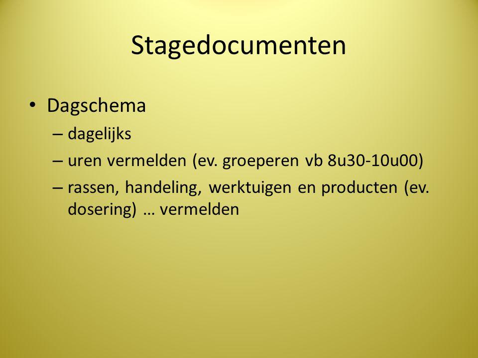 Stagedocumenten Dagschema dagelijks