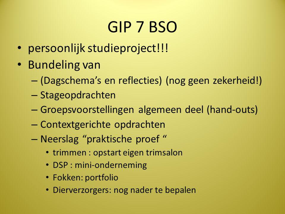 GIP 7 BSO persoonlijk studieproject!!! Bundeling van