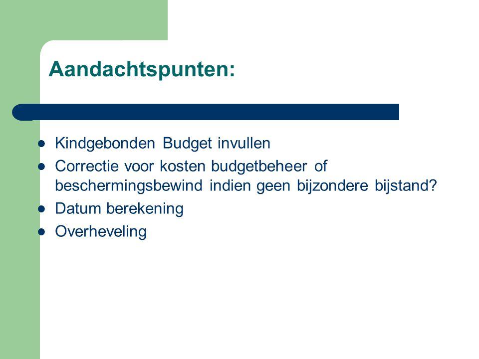 Aandachtspunten: Kindgebonden Budget invullen