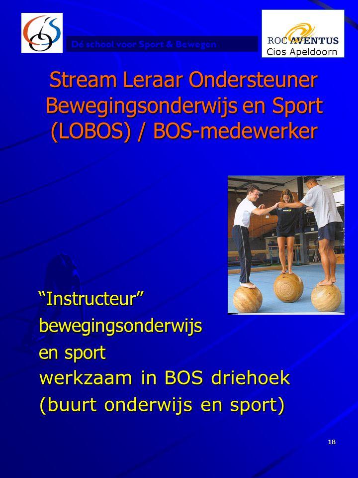 Stream Leraar Ondersteuner Bewegingsonderwijs en Sport (LOBOS) / BOS-medewerker