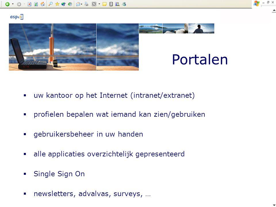 Portalen uw kantoor op het Internet (intranet/extranet)