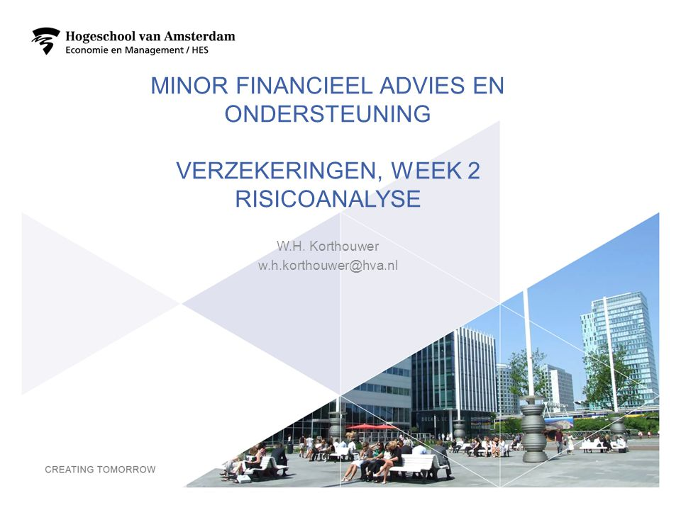 Minor Financieel advies en ondersteuning Verzekeringen, week 2 Risicoanalyse