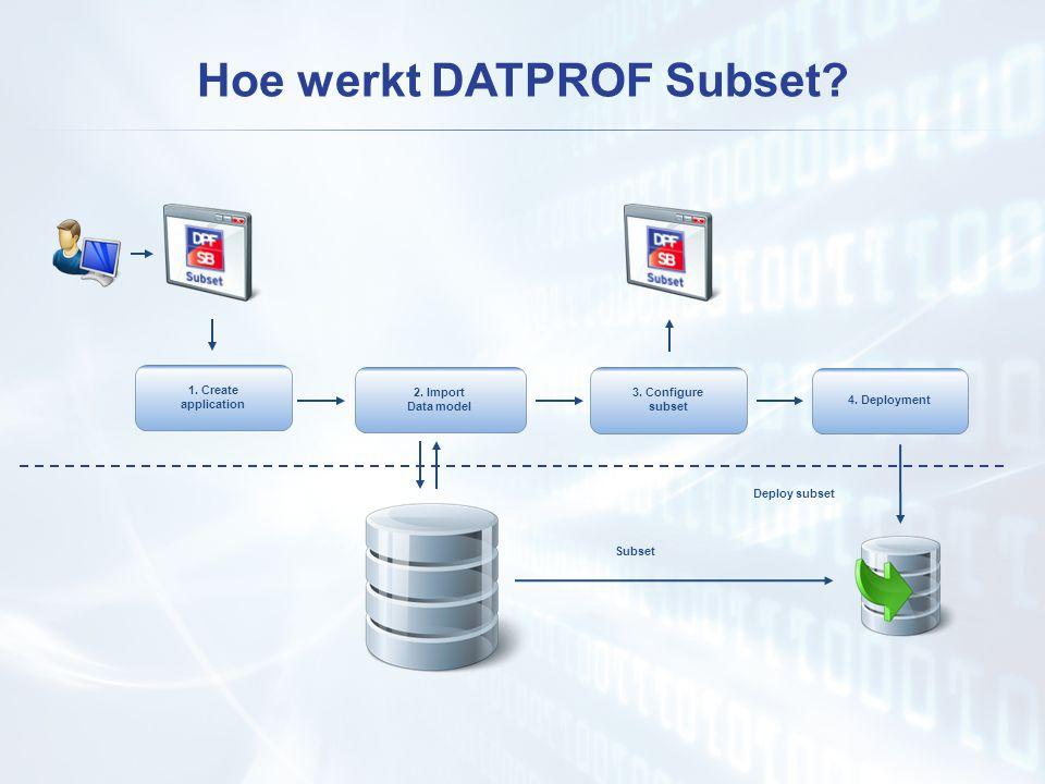 Hoe werkt DATPROF Subset