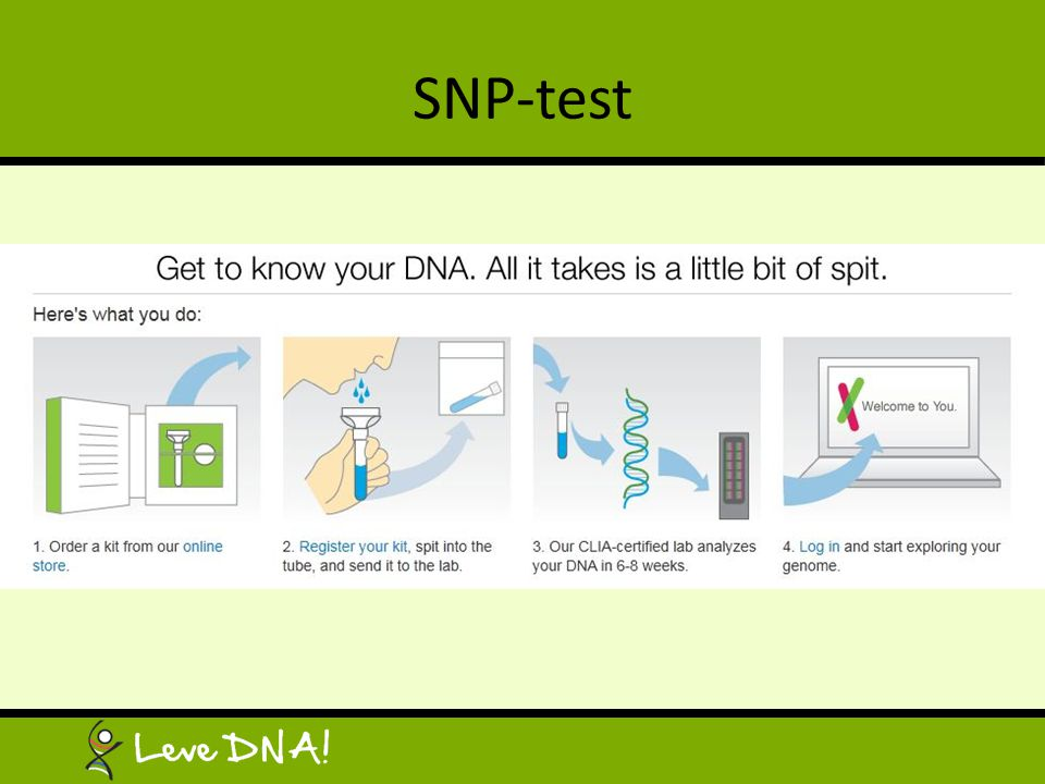 SNP-test