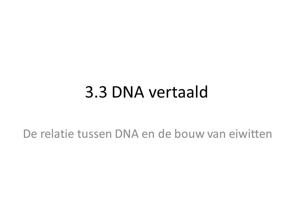 De relatie tussen DNA en de bouw van eiwitten
