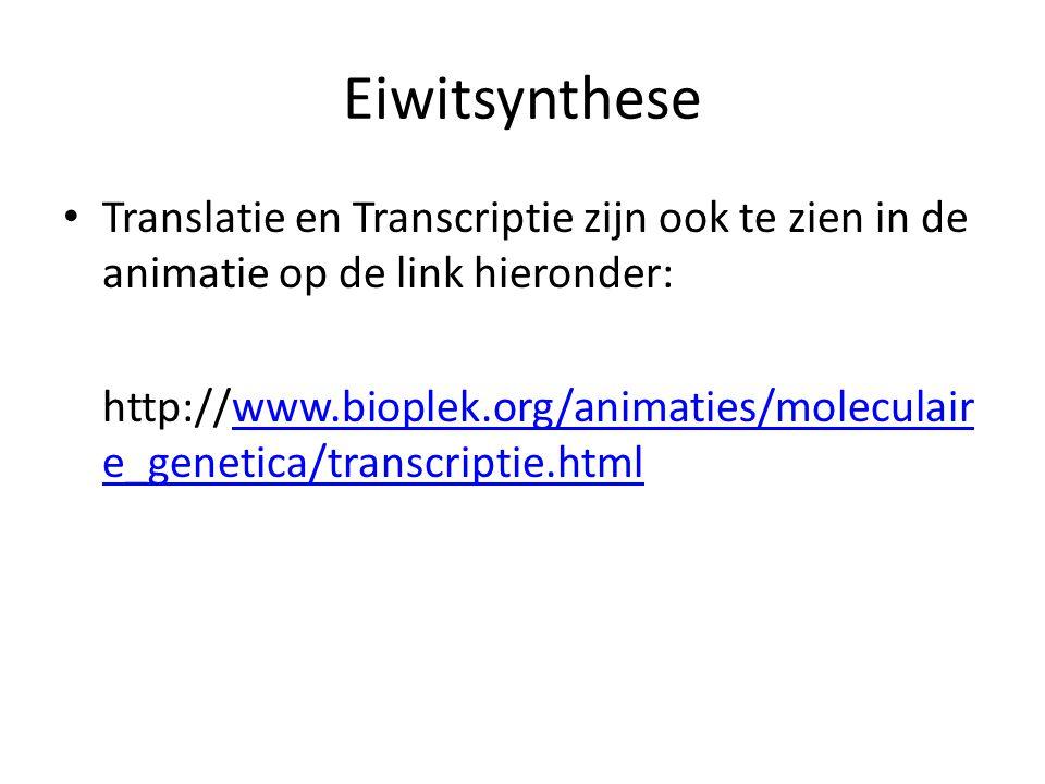 Eiwitsynthese Translatie en Transcriptie zijn ook te zien in de animatie op de link hieronder: