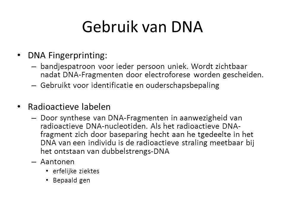 Gebruik van DNA DNA Fingerprinting: Radioactieve labelen