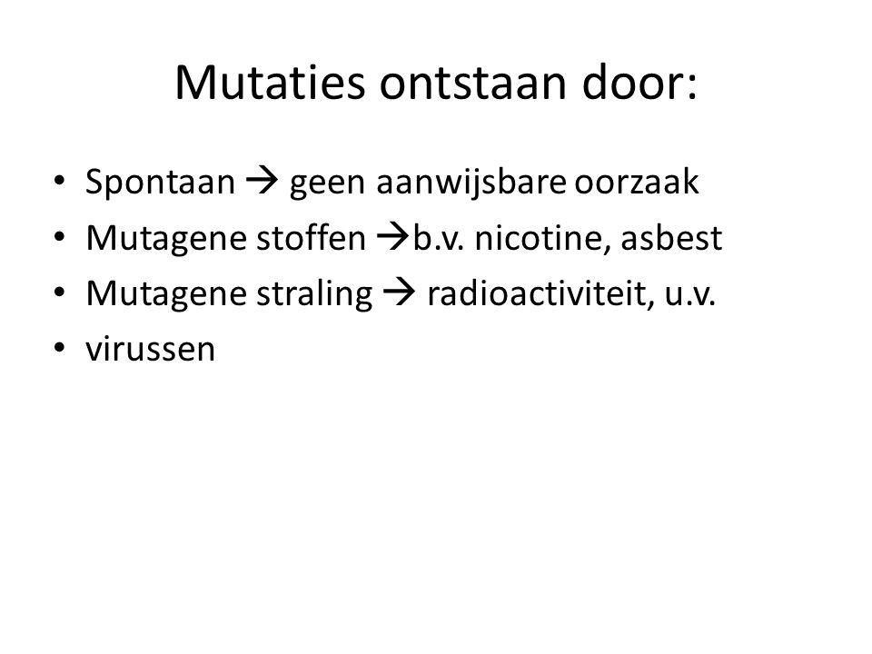 Mutaties ontstaan door: