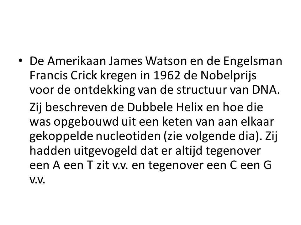 De Amerikaan James Watson en de Engelsman Francis Crick kregen in 1962 de Nobelprijs voor de ontdekking van de structuur van DNA.