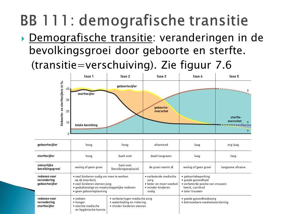 BB 111: demografische transitie