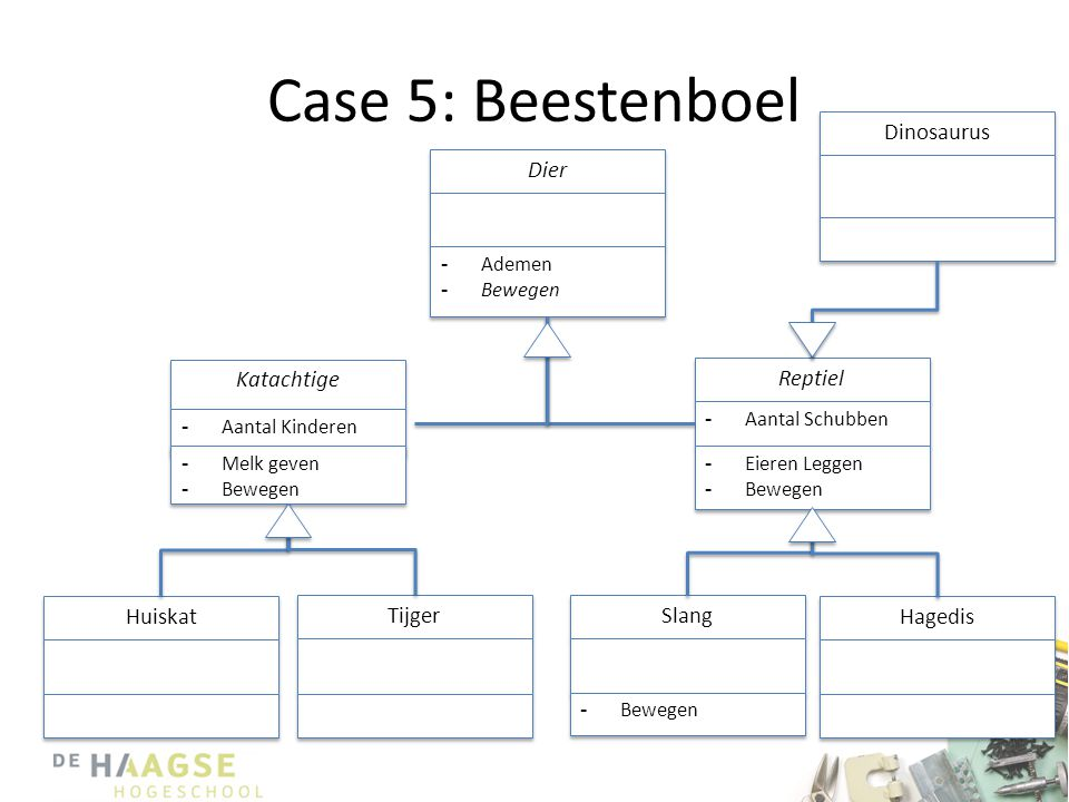 Case 5: Beestenboel Dinosaurus Dier Katachtige Reptiel Huiskat Tijger