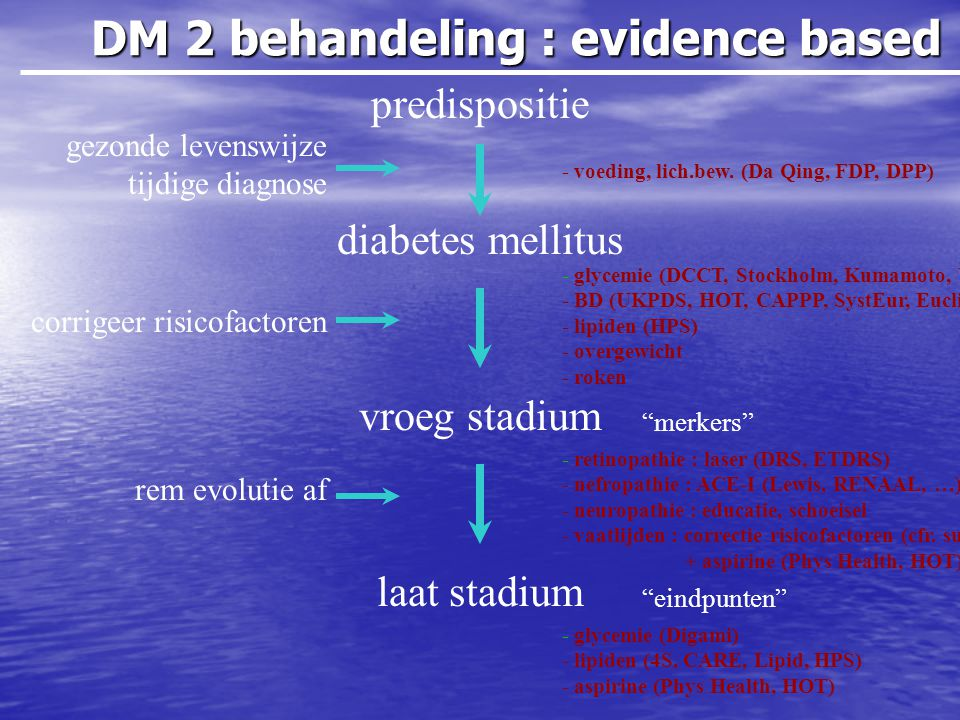 DM 2 behandeling : evidence based