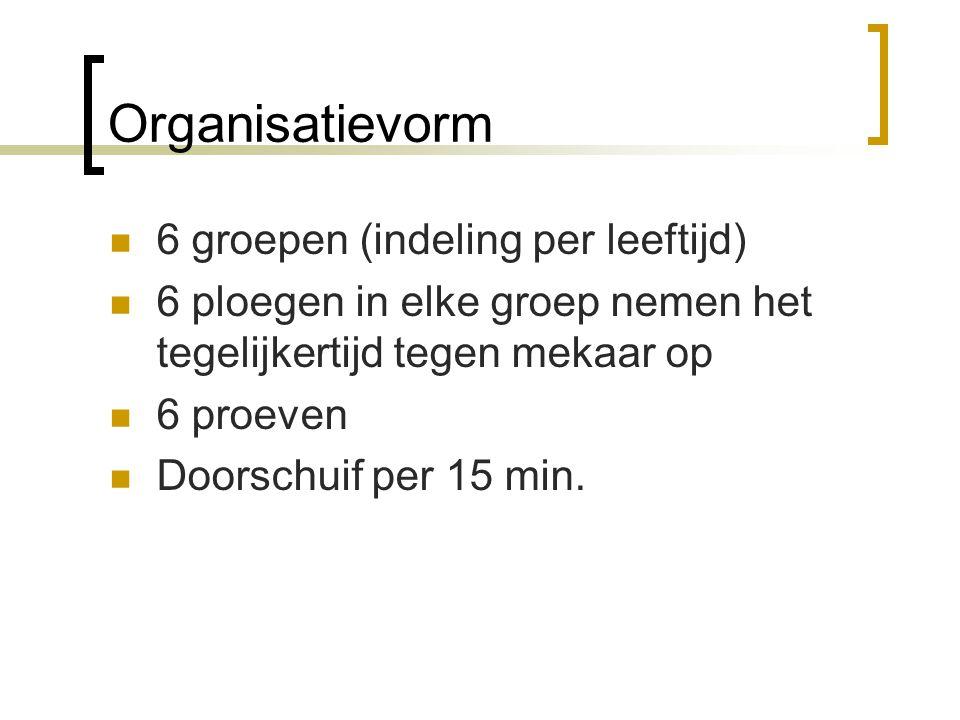Organisatievorm 6 groepen (indeling per leeftijd)