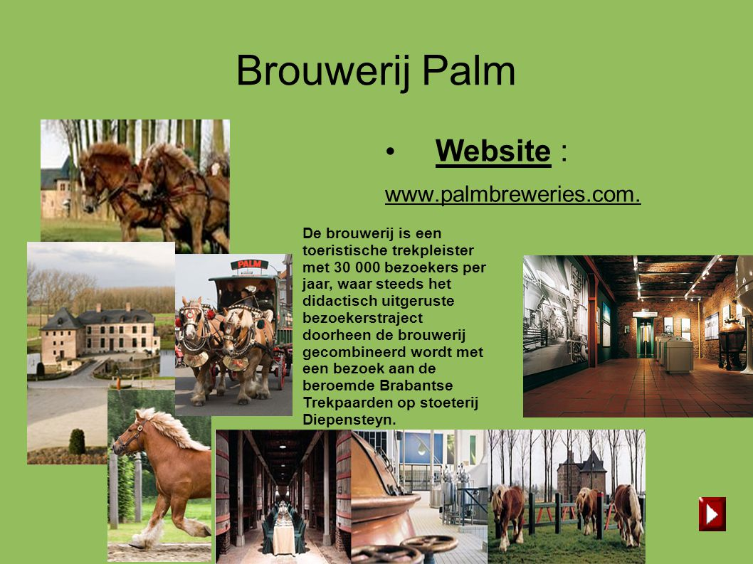 Brouwerij Palm Website : www.palmbreweries.com.
