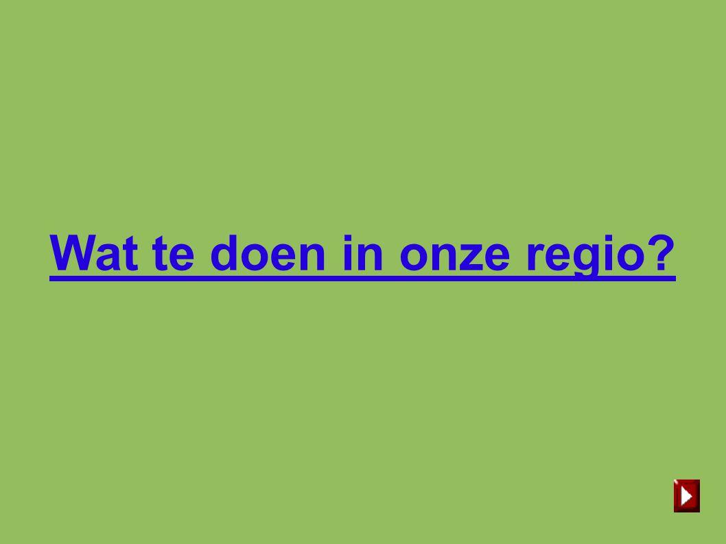 Wat te doen in onze regio
