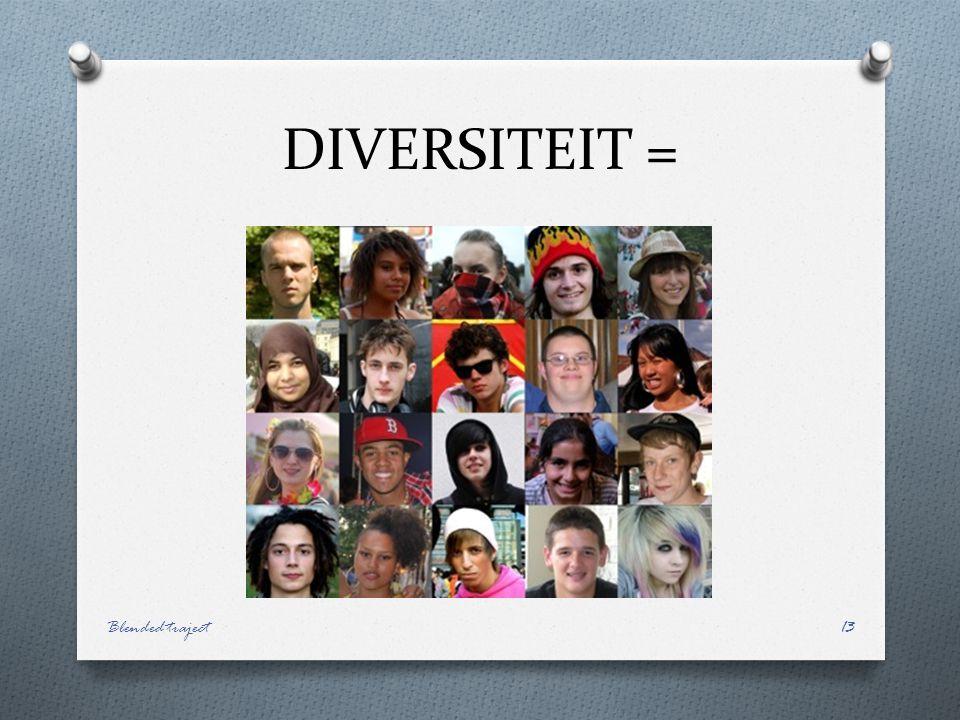 DIVERSITEIT = Blended traject