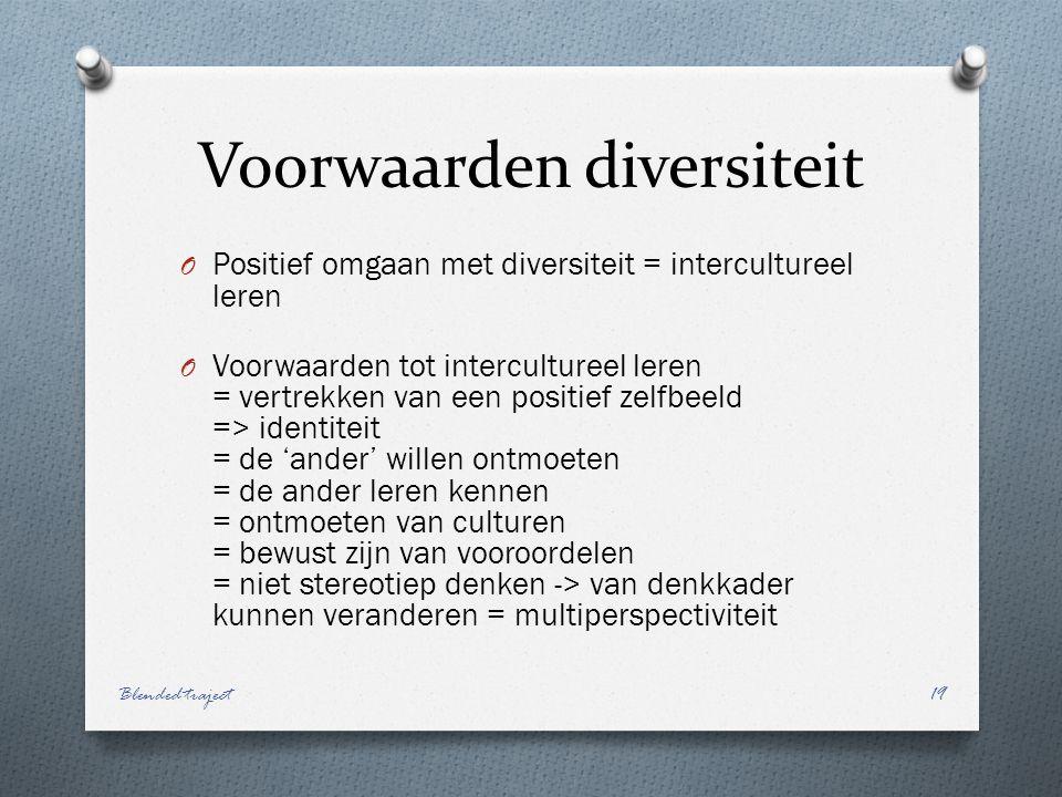 Voorwaarden diversiteit