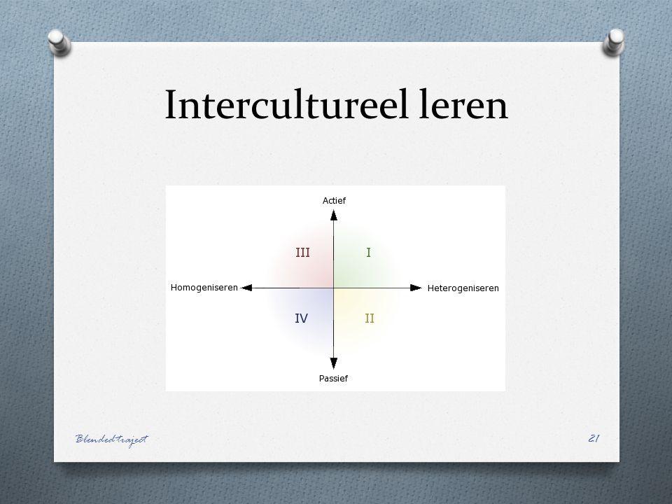 Intercultureel leren Blended traject