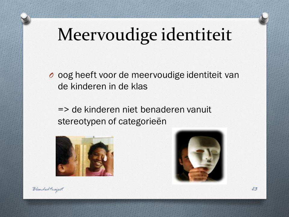 Meervoudige identiteit