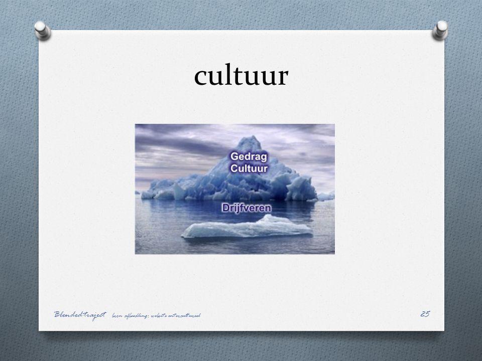 cultuur Blended traject bron afbeedling: website entercultureel