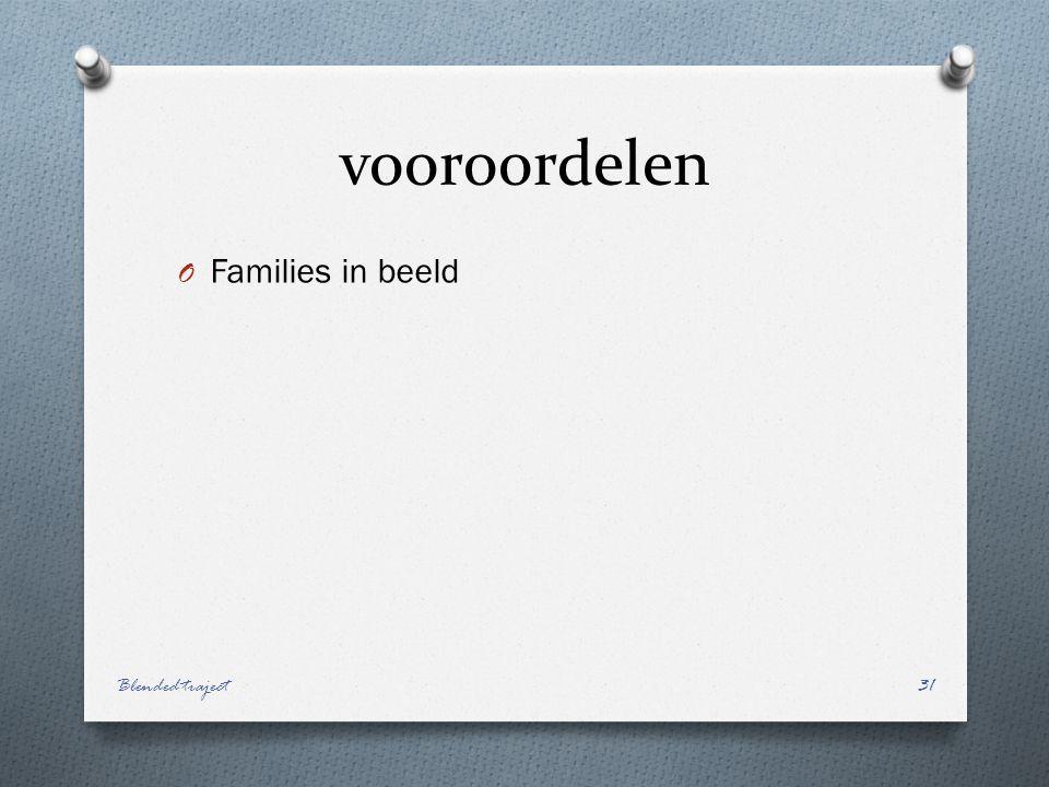 vooroordelen Families in beeld Blended traject