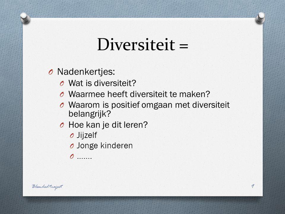 Diversiteit = Nadenkertjes: Wat is diversiteit
