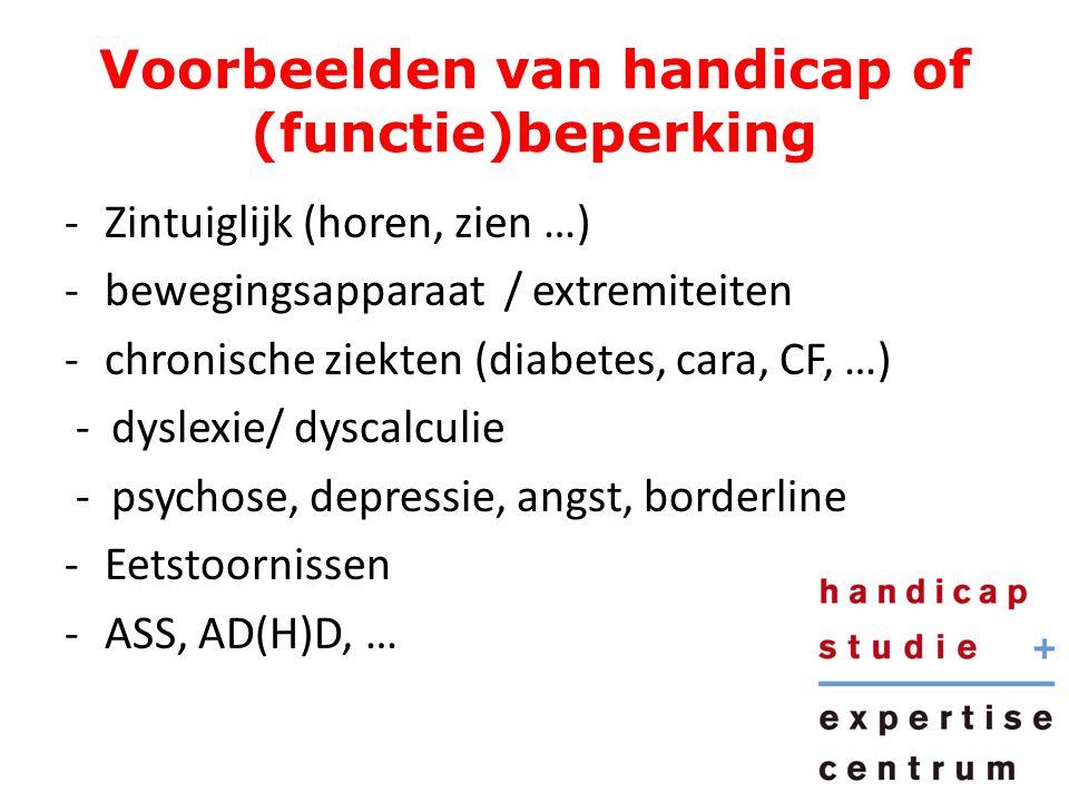 Voorbeelden van handicap of (functie)beperking