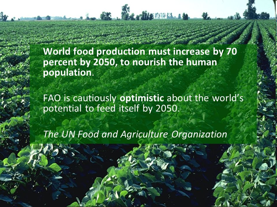World food production must increase by 70 percent by 2050, to nourish the human population.