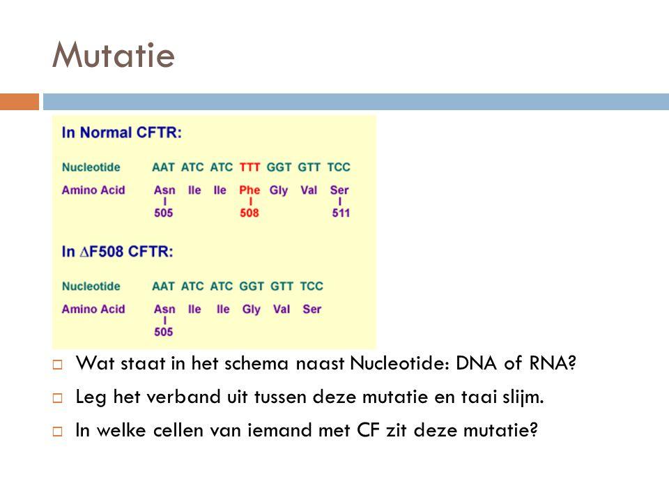 Mutatie Wat staat in het schema naast Nucleotide: DNA of RNA