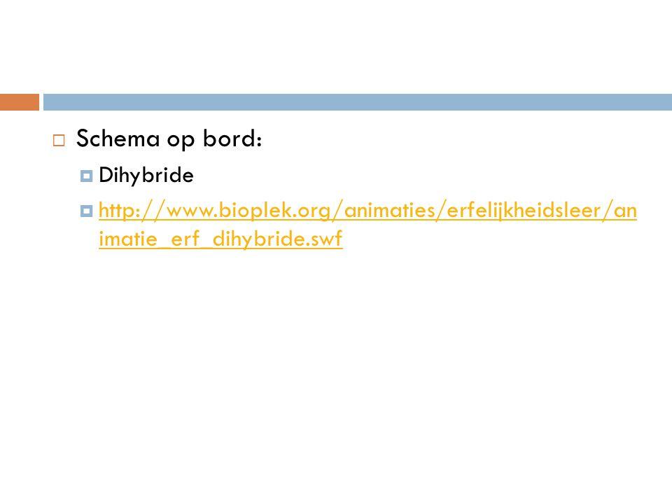 Schema op bord: Dihybride
