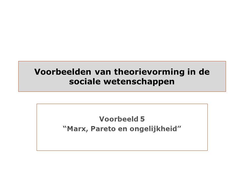 Voorbeelden van theorievorming in de sociale wetenschappen