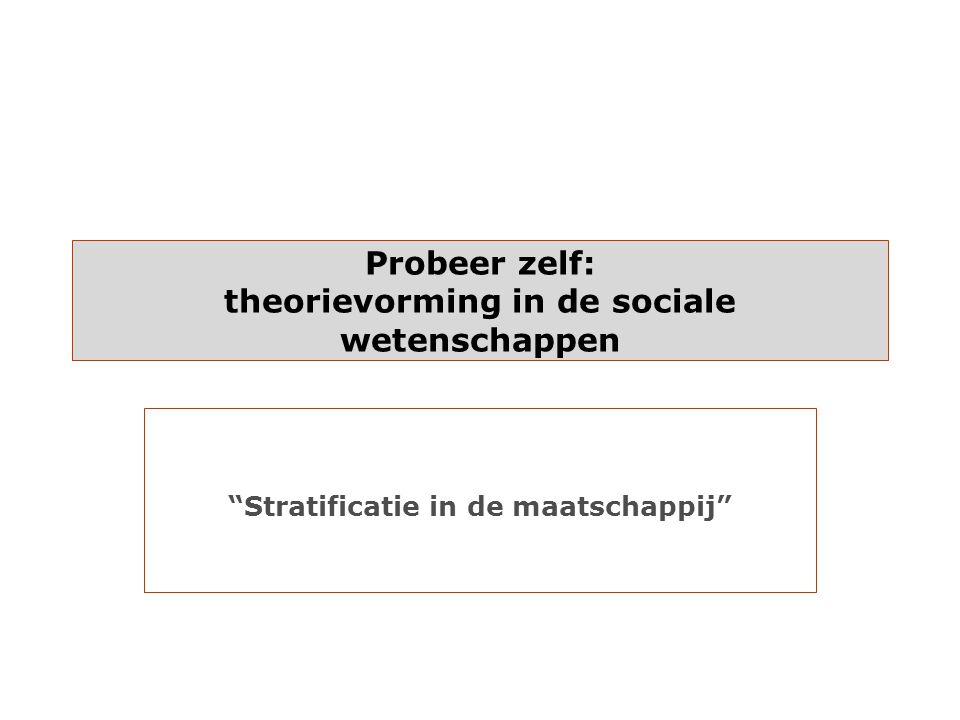 Probeer zelf: theorievorming in de sociale wetenschappen
