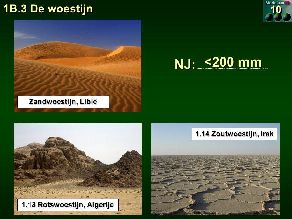 1.13 Rotswoestijn, Algerije