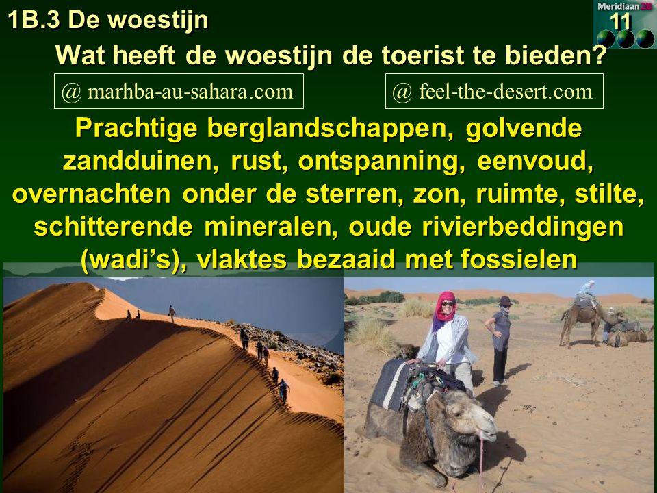 Wat heeft de woestijn de toerist te bieden